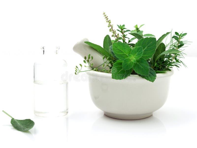 Alternatywnej opieki zdrowotnej świeży ziołowy i butelka aromatherapy zdjęcia stock