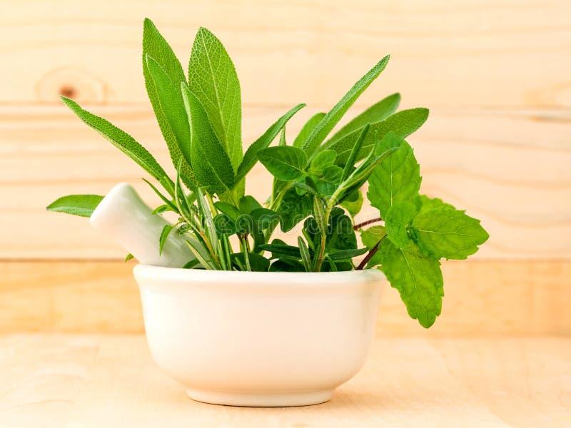 Alternatywnej opieki zdrowotnej świeży ziołowy w białym moździerzu fotografia stock