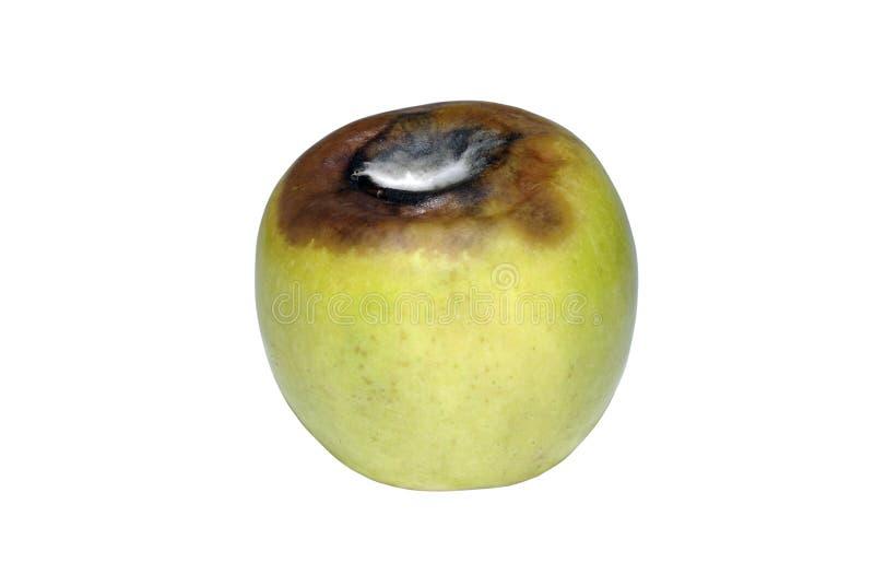 Alternder grüner Apfel lizenzfreies stockbild