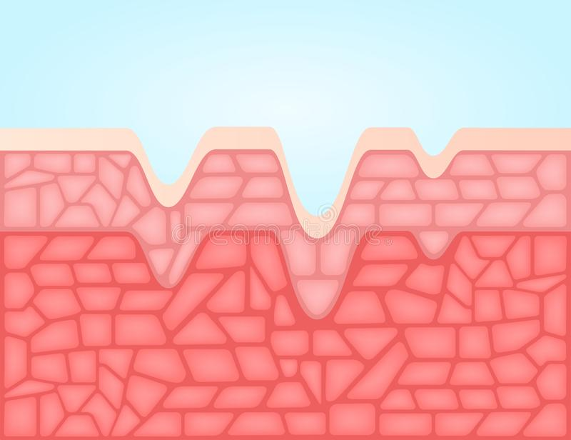 Alternder menschlicher Hauthintergrund vektor abbildung
