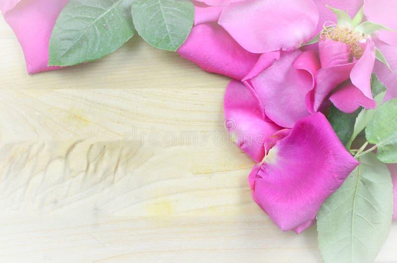 Alterndes helles Rosa stieg die Blumenblätter, die eine Grenze auf einem rustikalen hölzernen Hintergrund bilden Weinlesefilter a stockfotos