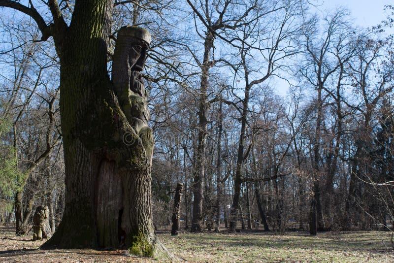 Altes altes Idol des ukrainischen Kriegers schnitzte vom Baum stockfoto
