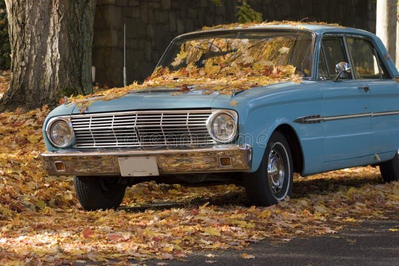 Altes Auto und fallende Blätter stockfotografie
