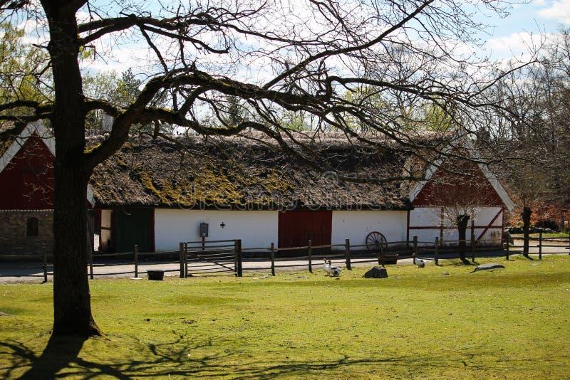 Altes Bauernhaus mit grünem Dach lizenzfreie stockbilder
