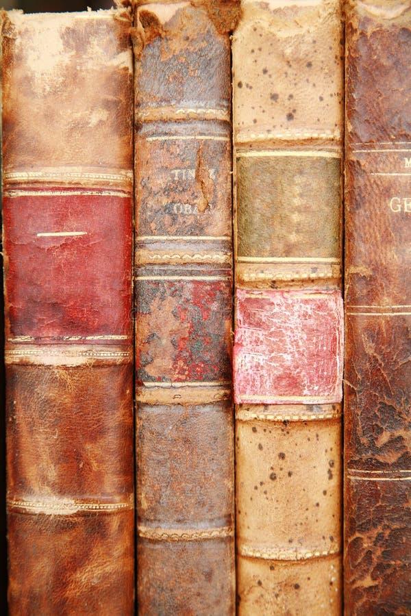 Altes Bookds stockbilder