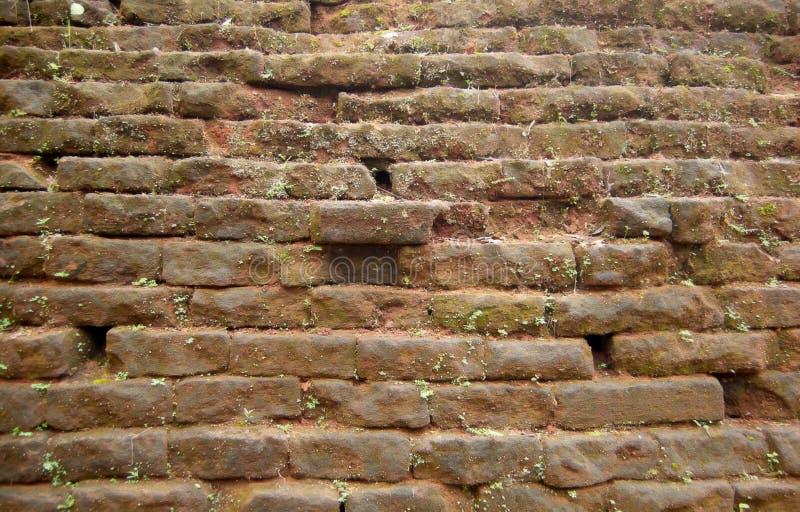 Altes brickwall stockfoto