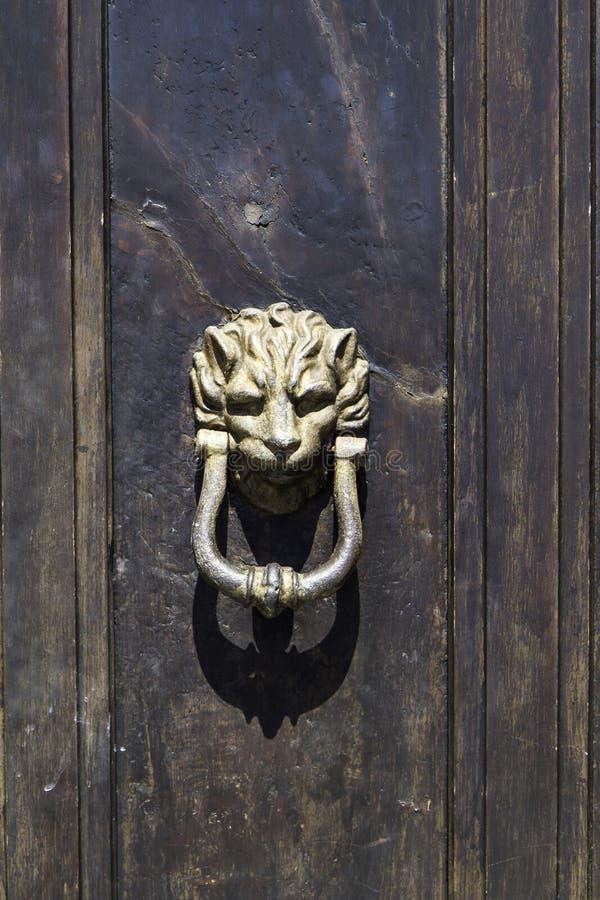 Altes Bronzetürklopferdetail der Holztür lizenzfreie stockfotografie