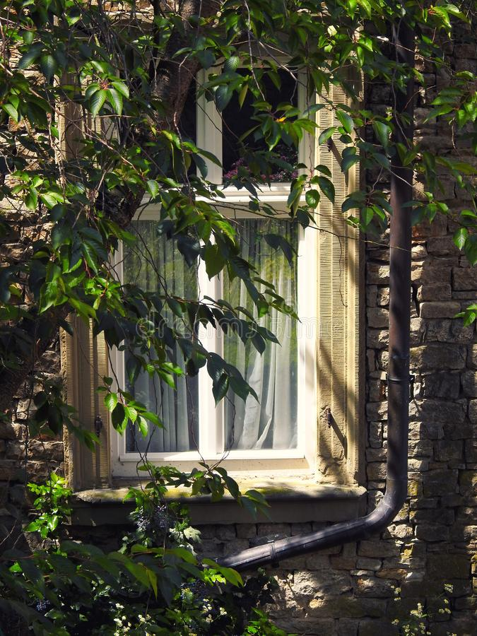 Altes Fenster im Hinterhof stockbilder