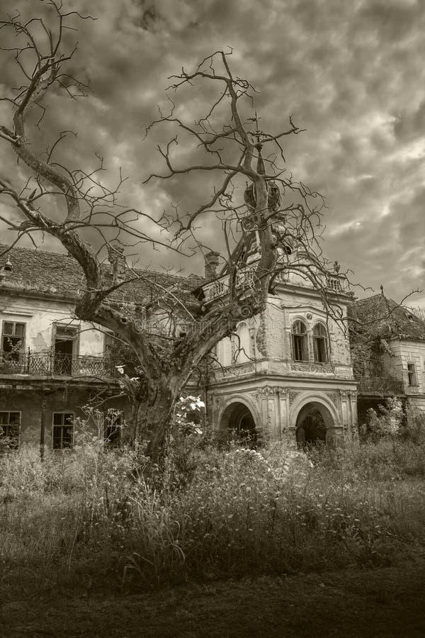 Altes furchtsames verlassenes Halloween-Palastschwarzweiß stockfotos