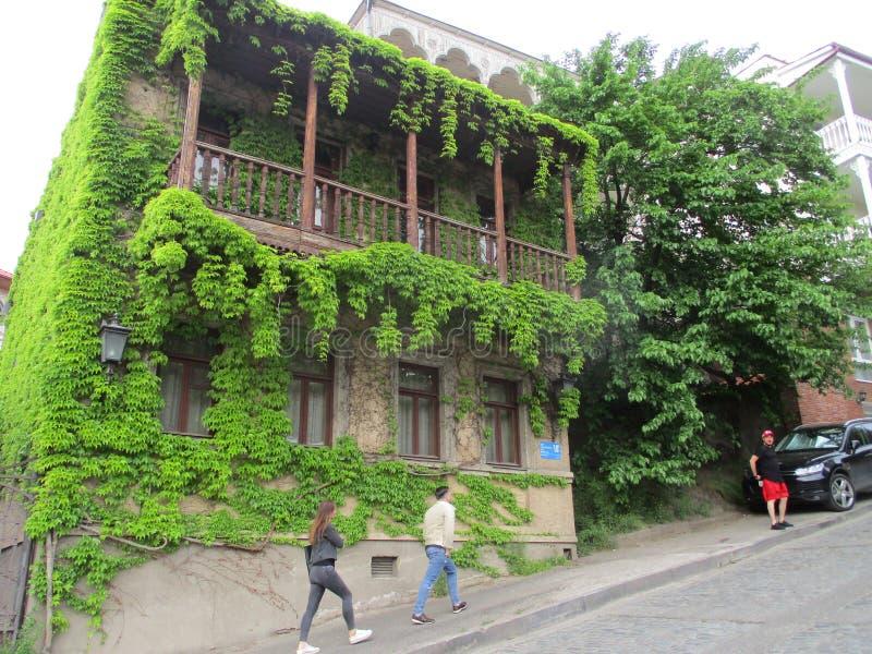 Altes Gebäude ist mit Efeu bedeckt lizenzfreies stockbild