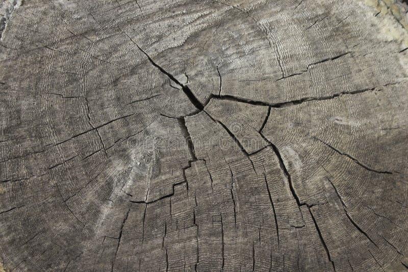 Altes gebrochenes Holz lizenzfreie stockfotografie