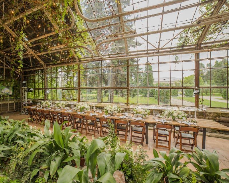 Altes Glasgewächshaus mit einer Vielzahl von den Anlagen, zum der Hochzeit, eine lange Tabelle zu feiern verziert mit Blumenvorbe stockfotografie
