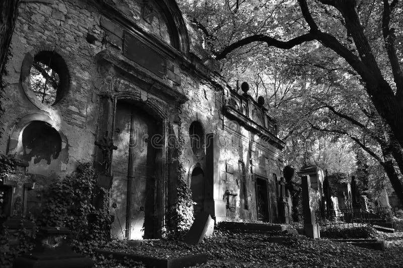 Altes Grab auf Olsany-Kirchhof in Prag in BW lizenzfreie stockfotografie