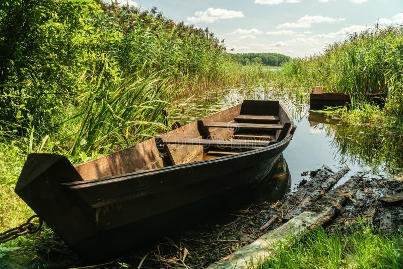 Altes hölzernes Boot auf dem Seeufer umgeben durch Reedanlage lizenzfreies stockfoto