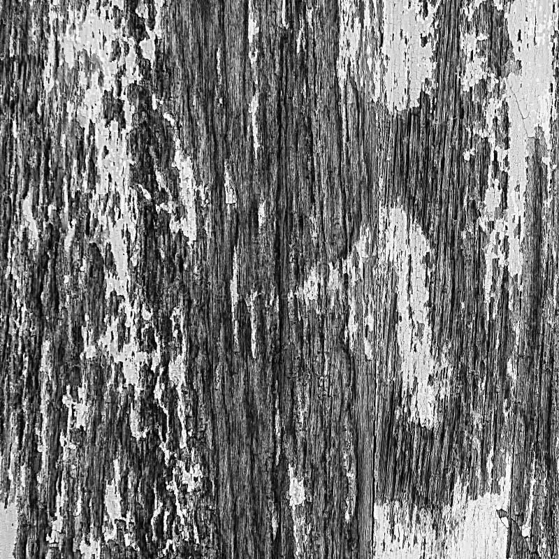 Altes hölzernes Oberflächenbrett des Sprunges lizenzfreie stockbilder