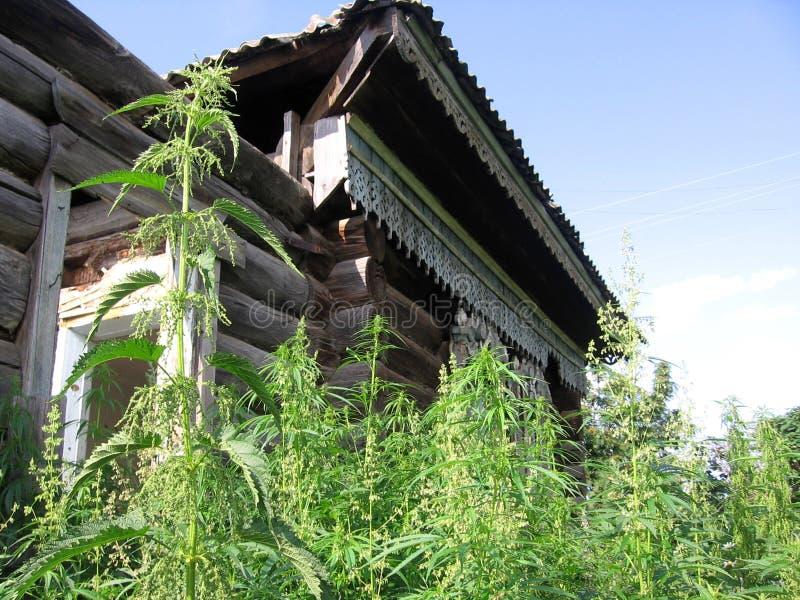 Altes hölzernes ruiniertes Haus verlassen im Gras mit einem schönen Muster auf dem Fenster stockfotografie