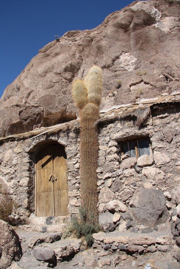 Altes Haus und Kaktus, Isla del Pescado, Salar de Uyuni lizenzfreie stockbilder