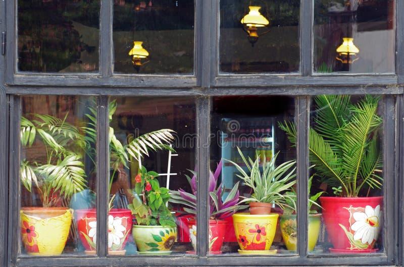 Altes Hausfenster mit Blumen stockbild