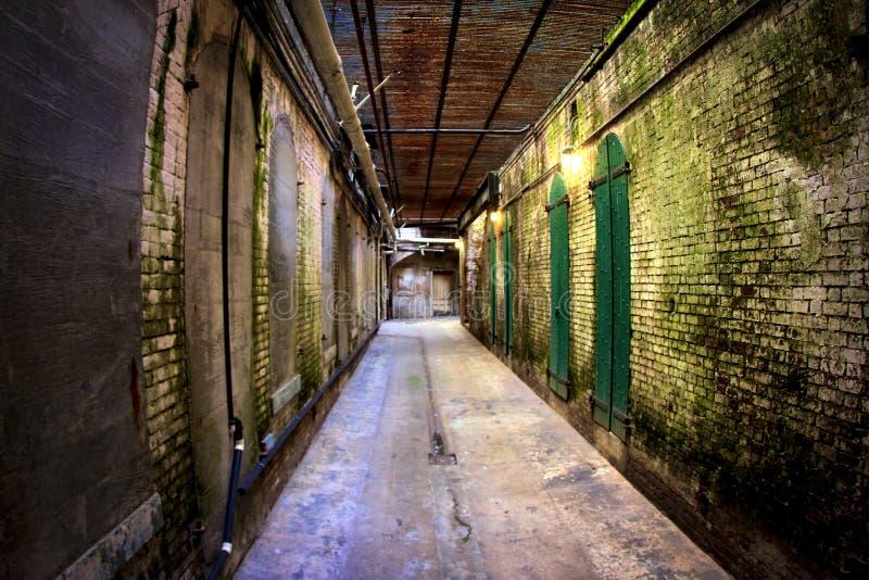 Altes Moos umfasste Halle in Alcatraz-Gefängnis in San Francisco, Kalifornien lizenzfreie stockfotos