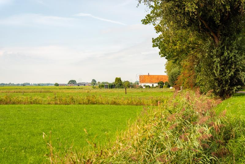 Altes niederländisches Bauernhaus mit einem orange mit Ziegeln gedeckten Dach stockfoto