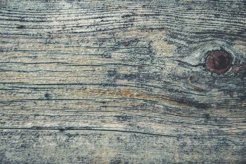 Altes rustikales Holz mit Form oder pilzartig auf Spitzenhintergrundbeschaffenheit lizenzfreies stockbild