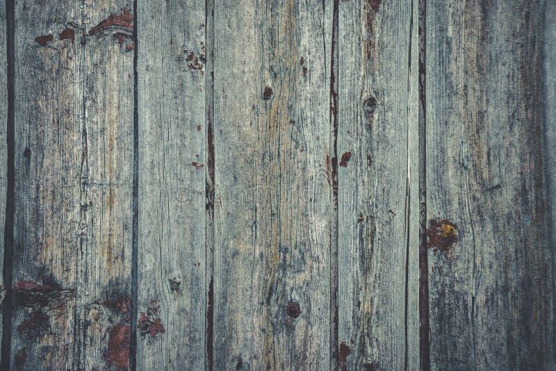 Altes rustikales Holz mit Form oder pilzartig auf Spitzenhintergrundbeschaffenheit stockfotos