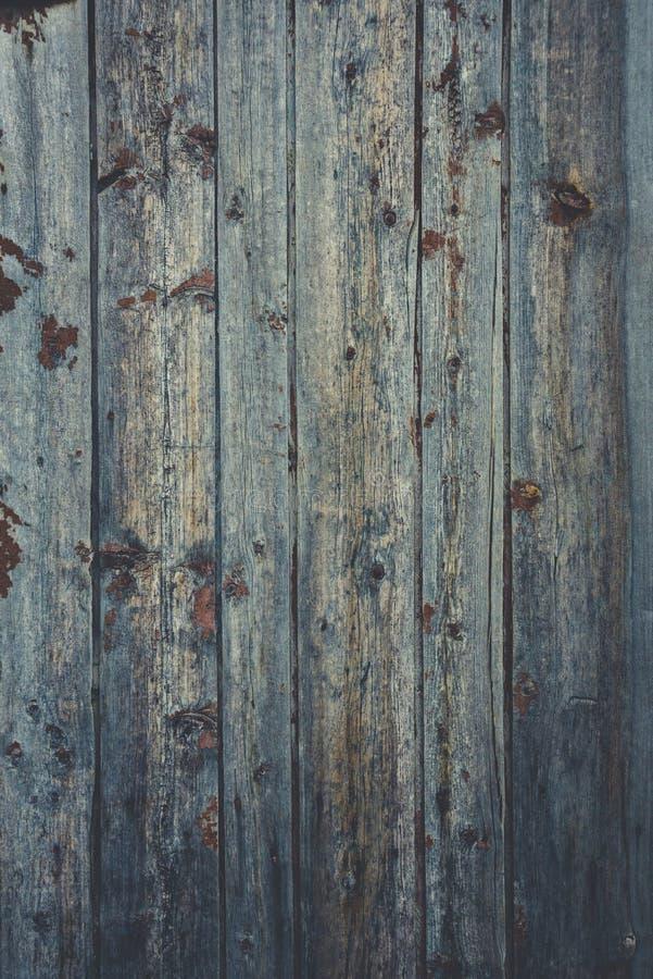 Altes rustikales Holz mit Form oder pilzartig auf Spitzenhintergrundbeschaffenheit stockfoto