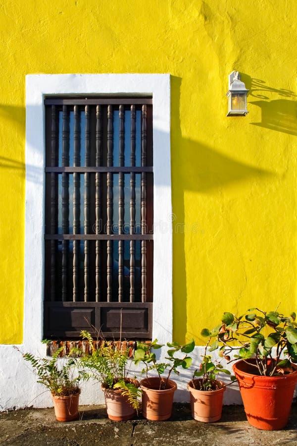 Altes San Juan - gelbe Wände, eingemachte Anlagen lizenzfreies stockfoto