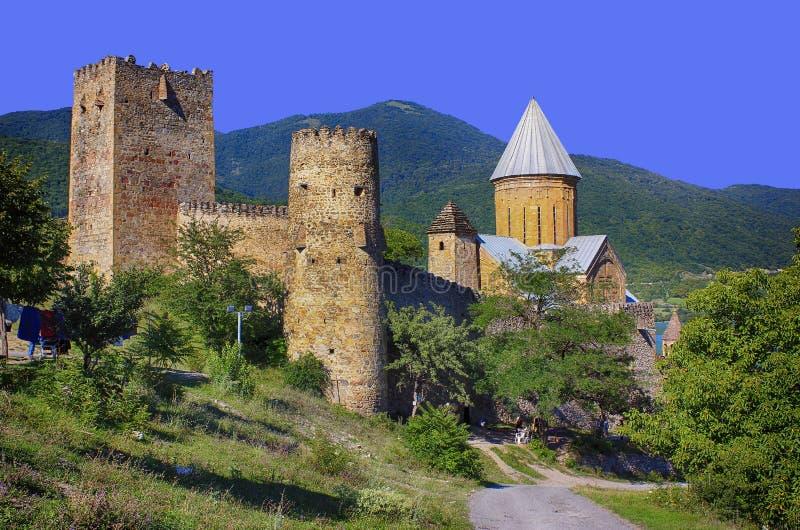 Altes Schloss in den Bergen stockbild