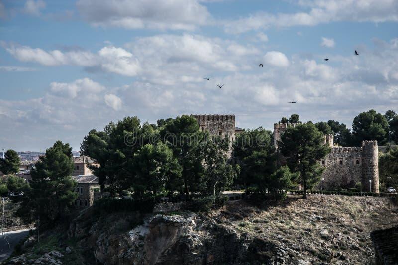 Altes Schloss und Pinaceae in Toledo, Spanien lizenzfreies stockbild