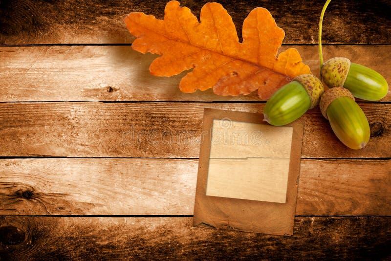 Altes Schmutzdia mit Herbsteichenblättern lizenzfreies stockbild