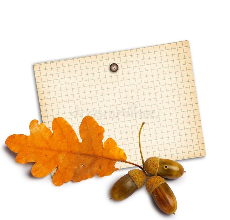 Altes Schmutzpapier mit Herbsteichenblättern stockfoto