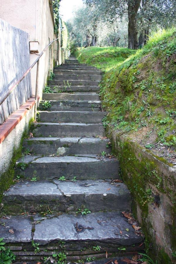 Altes steiles Treppenhaus ansteigend im Felsen, lang endlos Weg, der entlang die Gärten läuft lizenzfreie stockfotos