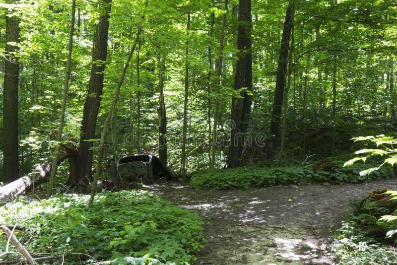 Altes verlassenes Auto im Wald lizenzfreie stockbilder