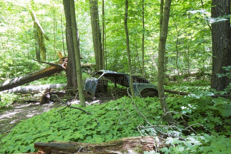 Altes verlassenes Auto im Wald lizenzfreie stockfotografie