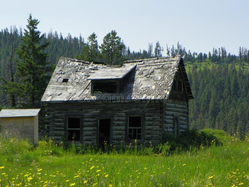 Altes Verminderungsklotzgutshaus in der Wildnis lizenzfreies stockbild