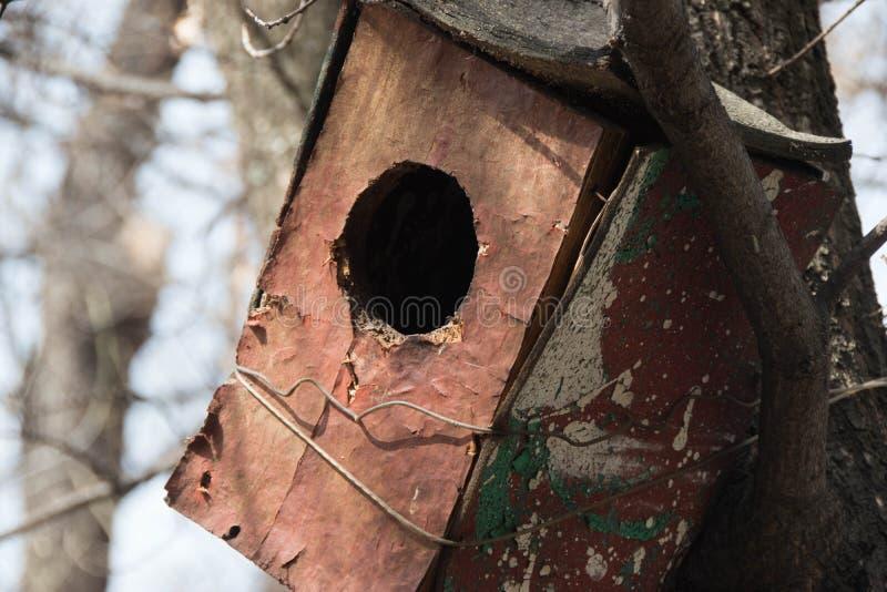 Altes Vogelhaus im Park stockfotografie
