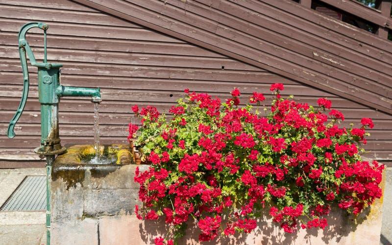 Altes Wasserfontain und -blumen stockfoto