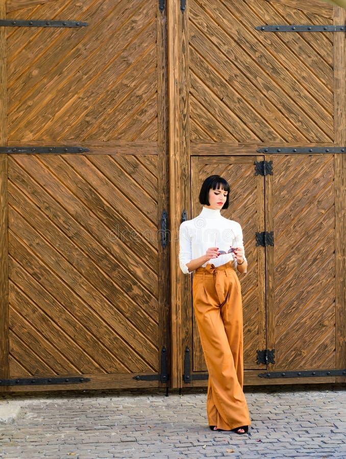 Alti pantaloni waisted Vestiti alla moda di usura castana attraente della donna Femminilità e sottolineare figura femminile fotografia stock libera da diritti