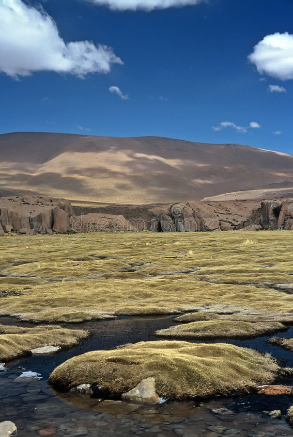 altiplano玻利维亚停泊 免版税库存图片