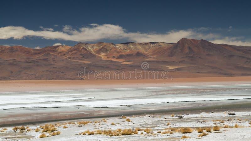 Altiplano的大理沙漠 库存图片