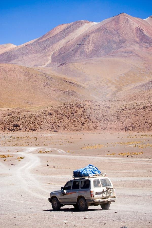 altiplano Боливия стоковое изображение rf