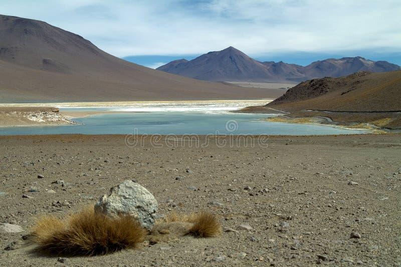 Altiplano 2 stock foto's
