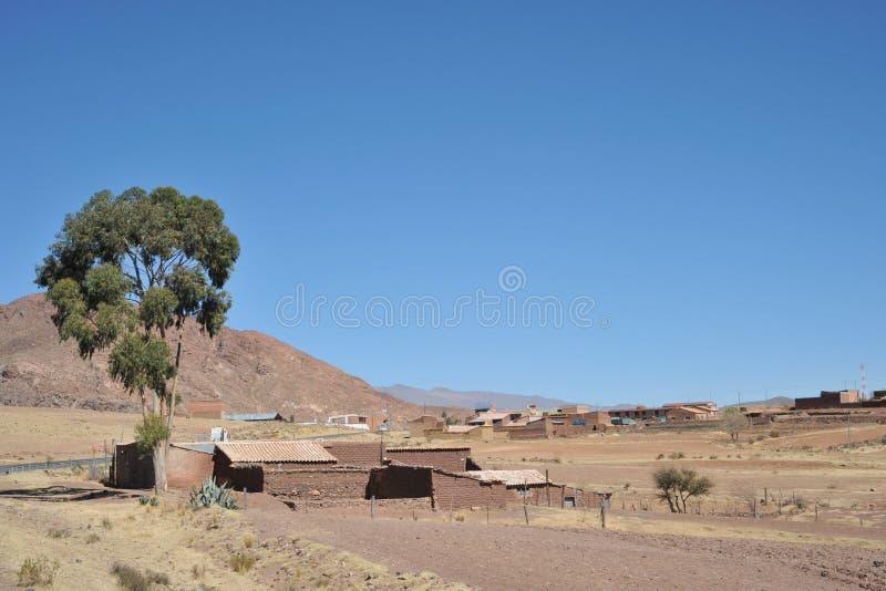 Download Altiplano bolivia fotografia stock. Immagine di terra - 55364890