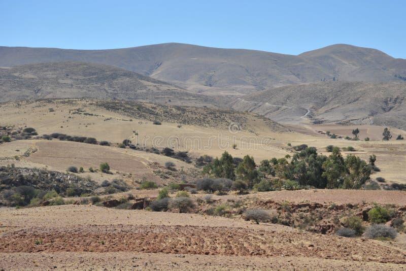 Download Altiplano bolivia immagine stock. Immagine di bolivia - 55365197