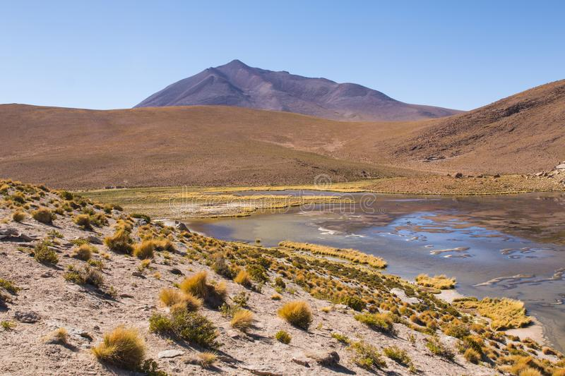 31 257 Bolivia Nature Photos Free Royalty Free Stock Photos From Dreamstime