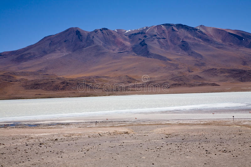 Altiplano boliviano imagen de archivo