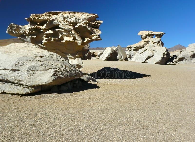 Altiplano, Bolivie photos stock