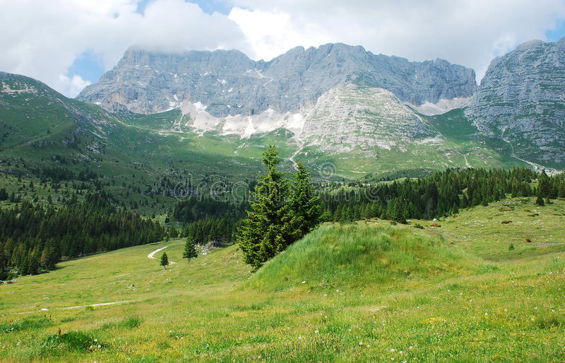 Altiplano de Montasio. The rural mountainous landscape of the Altiplano de Montasio in the Friulian Alps in north east Italy. This land is part of a 'malga', a stock photo
