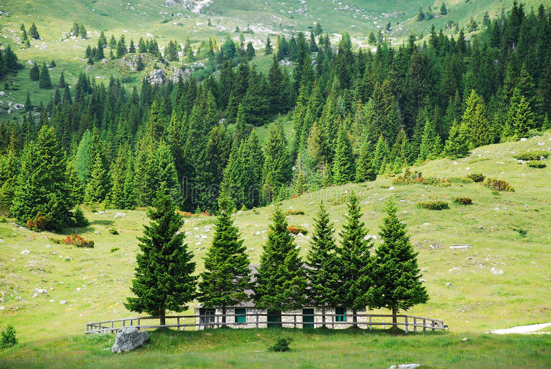 Altiplano de Montasio. The rural mountainous landscape of the Altiplano de Montasio in the Friulian Alps in north east Italy. A small disused farm building can stock image